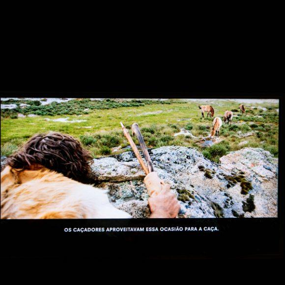 """""""Arte da Idade da Pedra no Vale do Côa"""""""